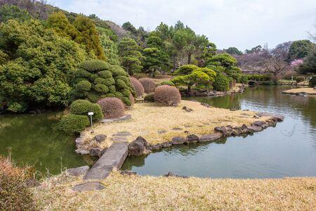 Landscape in Koishikawa botanial garden 版權商用圖片
