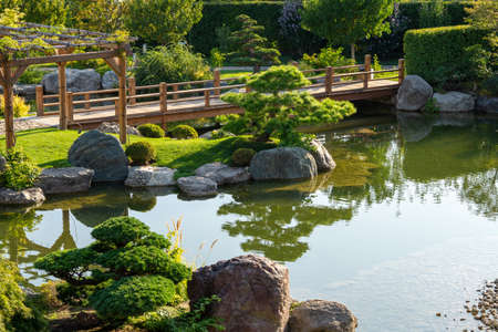 Awe japanese garden and Mriya resort and Spa. Pond and wooden footpath, small topiary pines and stones. Stock Photo