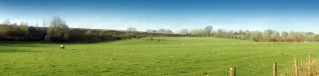 cumbria: Cumbria, panoramic view on the field with horse  Stock Photo