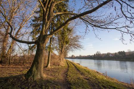 Nature landscape with trees and Elbe river, Czech republic, Brandys nad Labem, Stara Boleslav, Houstka Stock fotó