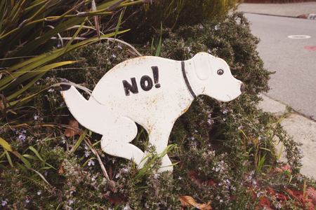 inhibition: Funny sign against canine exkcrements in that area Stock Photo