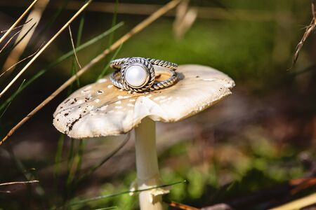 Silver ring with white river pearl on forest mushroom Stock fotó