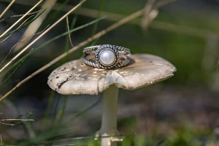 Silver ring with white river pearl on forest mushroom Stock fotó - 132866626