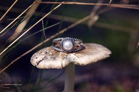 Silver ring with white river pearl on forest mushroom Stock fotó - 132868995