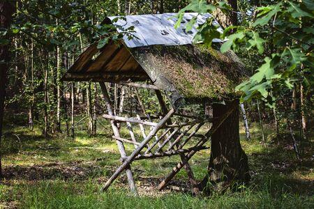 Wooden feeder for forest animals