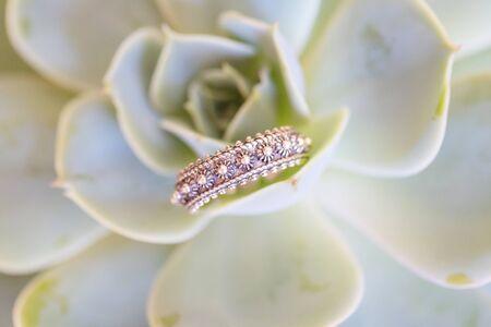 Beautiful elegant ring in oriental arranged on green houseleek Stock fotó - 147658381