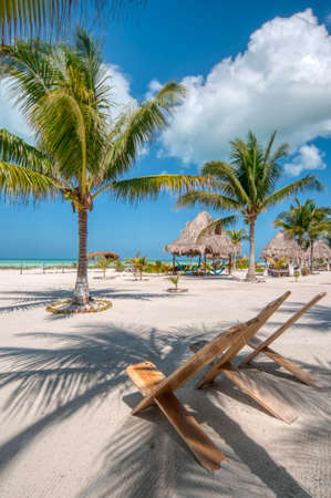 Perfect beach Caribbean Ocean front, a perfect beach club with tree palms white sand and relax, Holbox island, Mexico, vertical screen Stock fotó