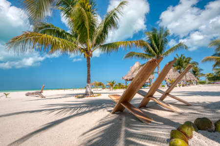 Perfect beach Caribbean Ocean front, a perfect beach club with tree palms white sand and relax, Holbox island, Mexico