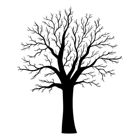 Vector tree silhouette Illustration