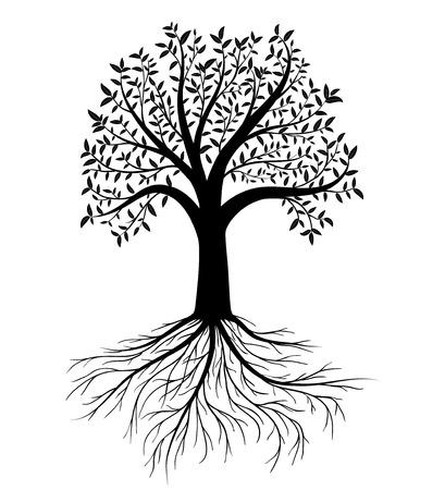 잎과 뿌리를 가진 나무의 실루엣