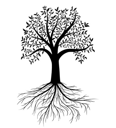 silhouette of tree with leaves and roots
