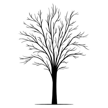 Vector tree silhouette 向量圖像