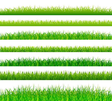 lawn grass: Green grass borders set vector