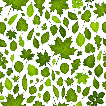 Seamless pattern of green leaves background