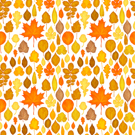 autumn background: Seamless pattern of autumn leaves background