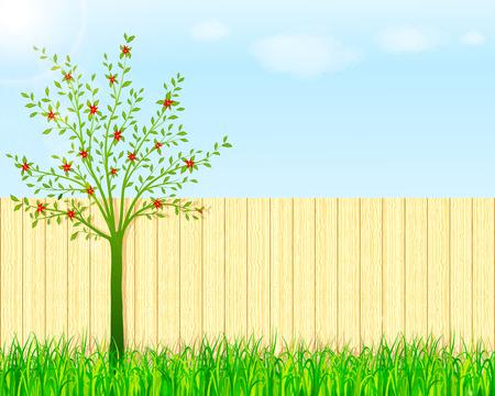 裏庭の庭の背景