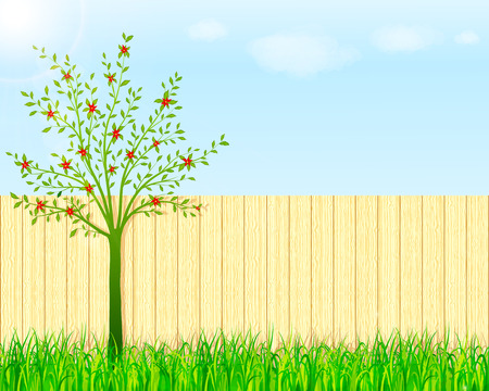Backyard garden background