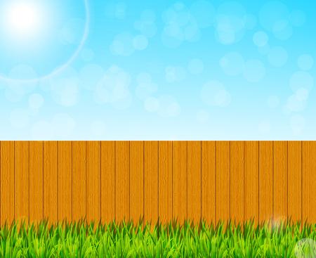 backyard: Backyard garden background