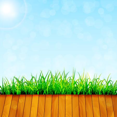 green garden: Green garden background Illustration