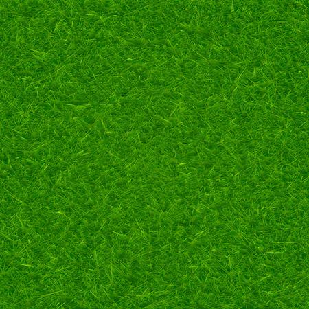 grass texture: Green grass texture vector background
