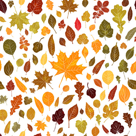 Seamless pattern of autumn leaves vector background Stock Illustratie