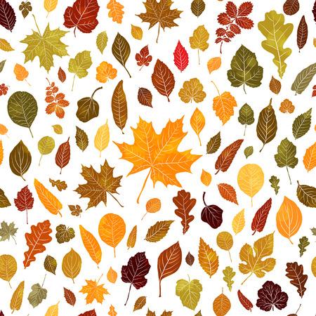 Seamless pattern of autumn leaves vector background Ilustração