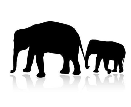 Silhouette famiglia di elefanti isolato su sfondo bianco vettoriale
