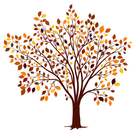 autumn tree: Autumn tree with colorful leaves vector background