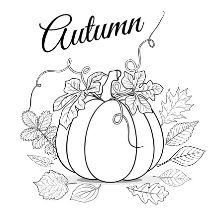 Autumn background with pumpkin and leaves for coloring book Ilustração