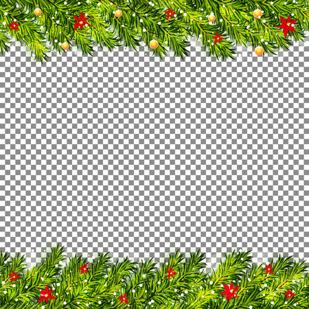 Christmas tree branches on transparent background vector