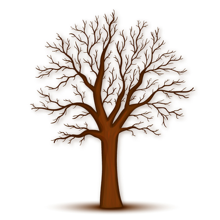 Tree without leaves vector Vettoriali