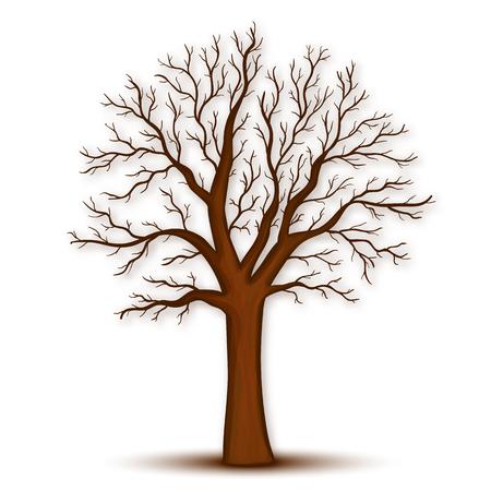 Drzewo bez liści wektor Ilustracje wektorowe