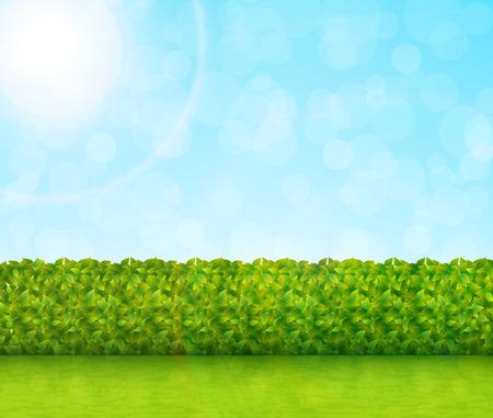 Garden background vector