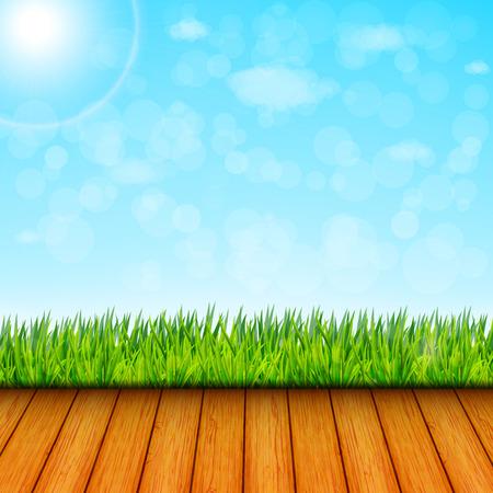 green garden: Green garden background vector
