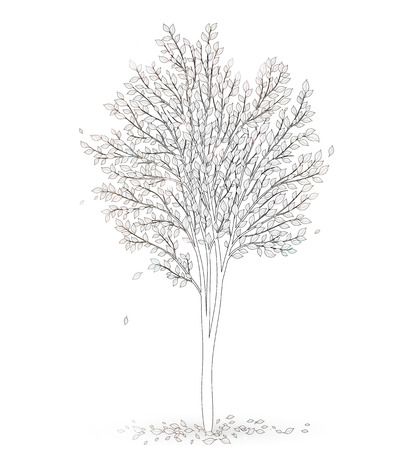 tree: Tree with leaves on white background vector Illustration