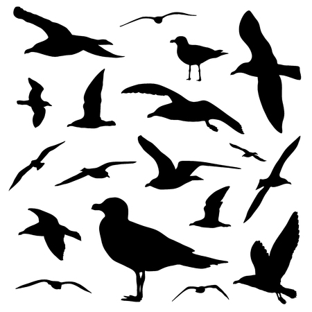 Seagull silhouette set isolated on white background vector Stock Illustratie