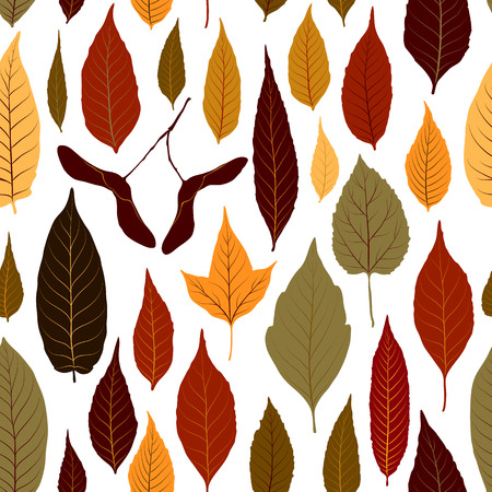 Seamless pattern vector background with colorful autumn leaves