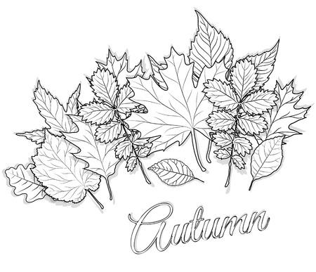 Vector Herbst Gemusterten Hintergrund Mit Kürbis, Ahorn Und Eiche ...