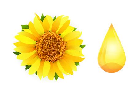 Sunflower oil on white background vector  イラスト・ベクター素材