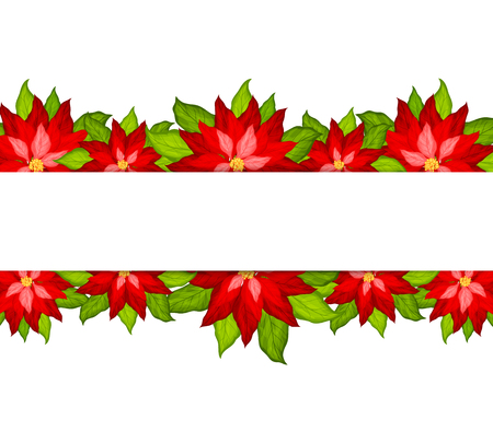 Christmas background with poinsettia border vector Illustration