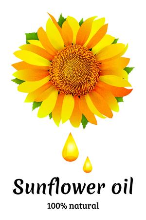 Sunflower oil vector background  イラスト・ベクター素材