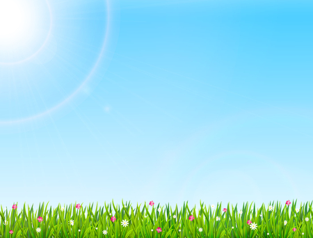 Spring or summer nature background with green grass and flowers. Vector illustration
