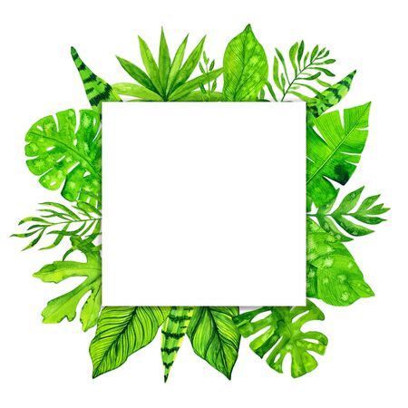 Tropical exotic leaves frame on white background. Watercolor illustration