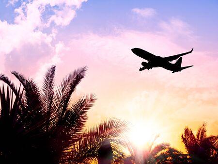 Avion survolant le palmier tropical et le ciel du lever du soleil Banque d'images
