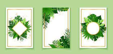 Botanical banners set with tropical leaves. Vector illustration