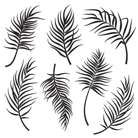 Palm leaves silhouettes set isolated on white background. Vector illustration