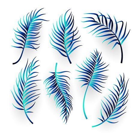 Abstract tropical leaves set on white background. Vector illustration