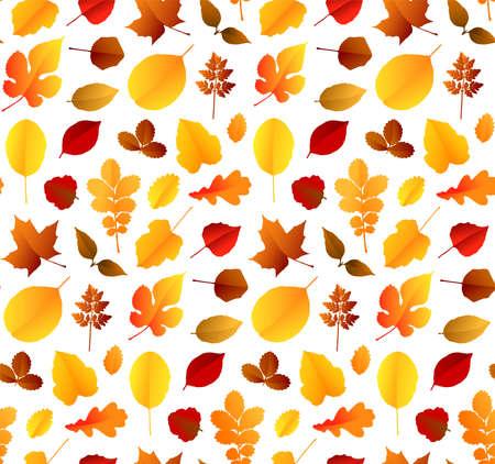 Colorful autumn leaves seamless pattern background. Vector illustration Stock Illustratie