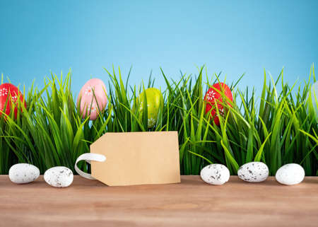 Easter background with colorful eggs, green grass and tag Banco de Imagens