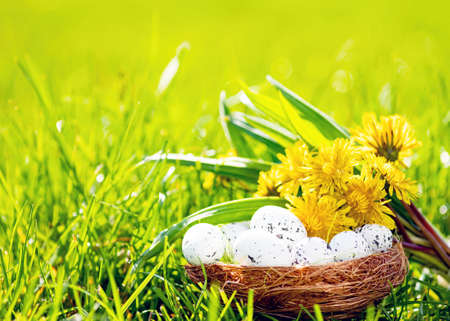 Easter background with eggs, green grass and dandelions